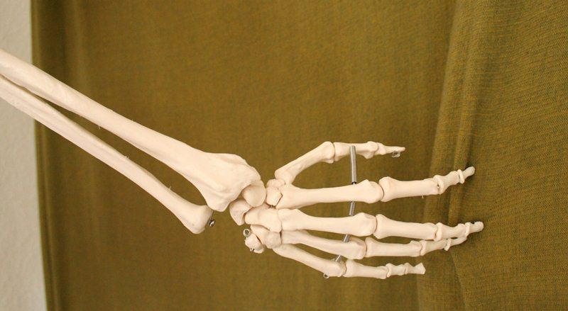 Руки скелета своими руками